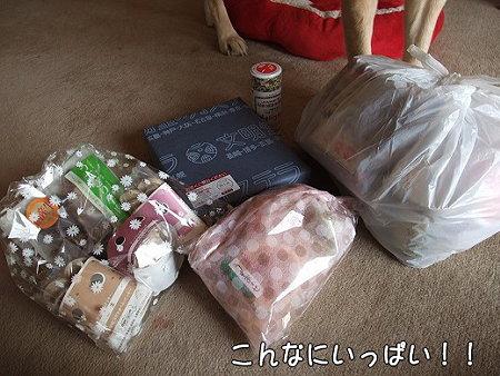 s-myu2009_0325(004)
