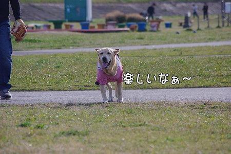 s-myu2009_0329(012)