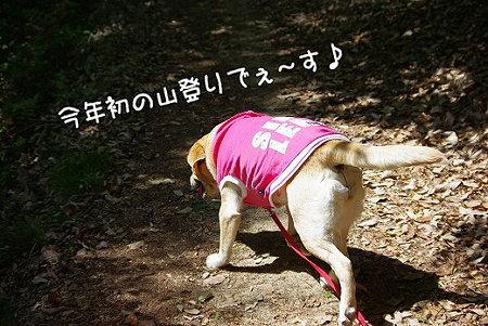 s-myu2009_0430(003)