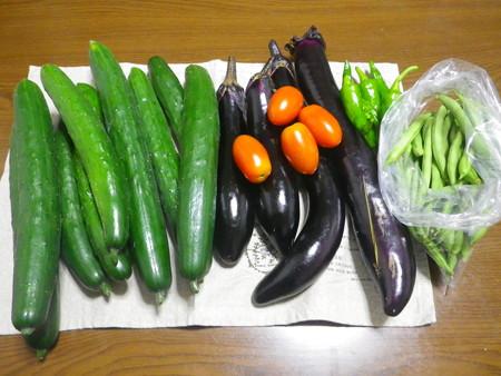 夏野菜2014