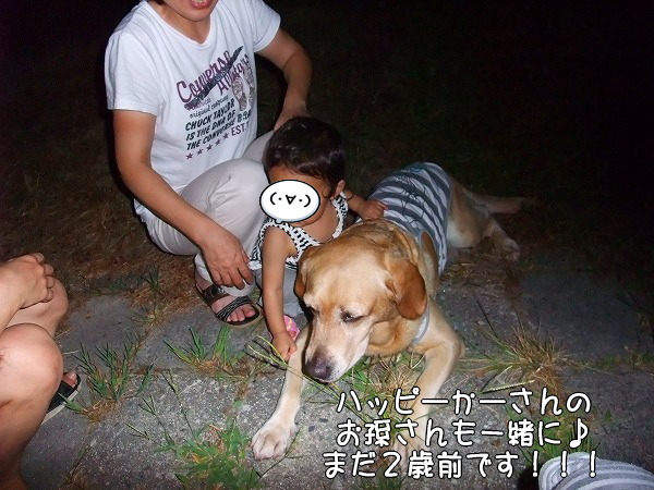 s-2008_0813myu0138