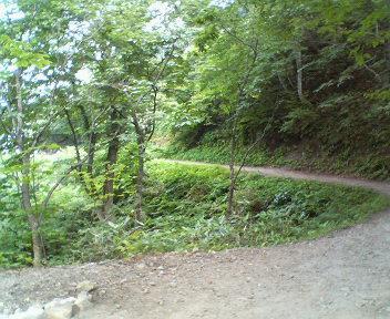 写真: 燕温泉 河原の湯までの道