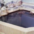 写真: 東鳴子温泉 高友旅館 黒湯