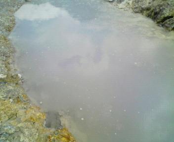 写真: 藤七 泥湯の粘着力はすさまじい