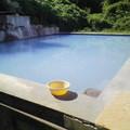 写真: プールのよう いちのいで会館