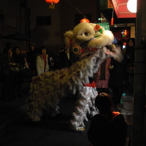 Photos: 春節祭2008@神戸南京町