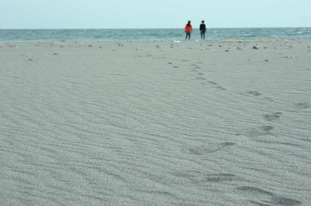海に向かって