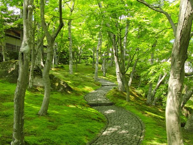 Photos: 箱根美術館2