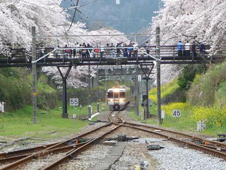 090405-山北駅ホームから (8)