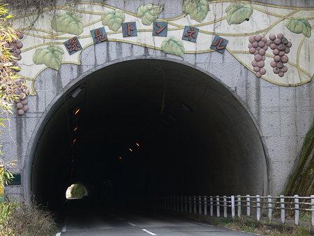 両院ファームトンネル
