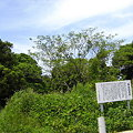 写真: 角島砲台跡