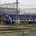 Photos: _MG_0196_MG_0193 アンパンマントロッコ列車(その4)