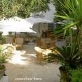 Photos: ダール・ザルークの中庭2011年