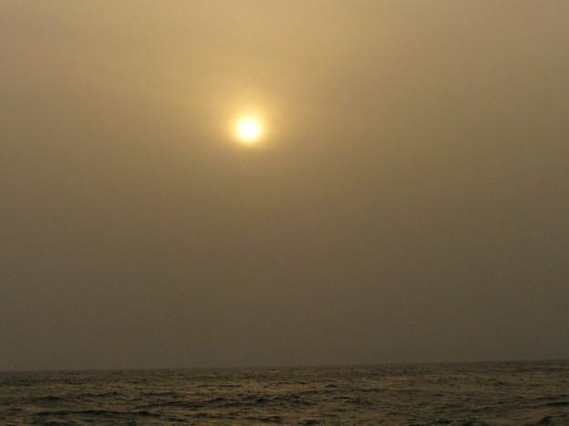 Photos: 黄色い落日