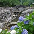 Photos: 風鈴まつり4260614c03