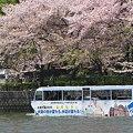 水陸両用バスが行く~=3