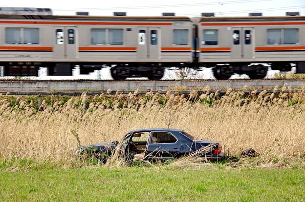 見沼の廃車007