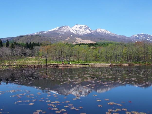 妙高高原 いもり池