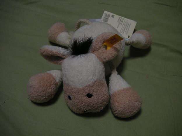 写真: シュタイフの羊