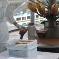 写真: 生チョコレート