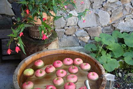 2008.08.12 徳沢園 信州りんご