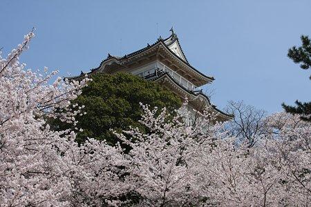 2009.04.07 小田原城 天守閣
