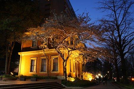 2009.04.07 横浜 夜桜 戸田記念館