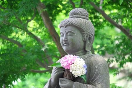 2014.06.17 鎌倉 長谷寺 仏像と紫陽花