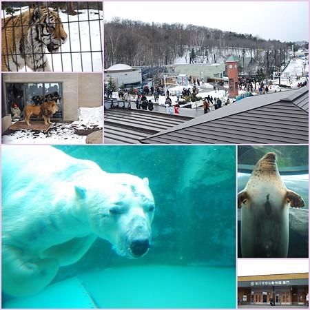 20090327 旭山動物園