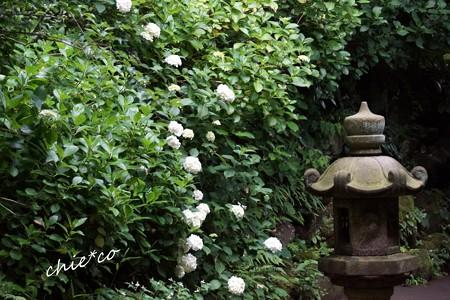 北鎌倉-282