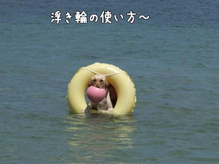 浮き輪の使い方