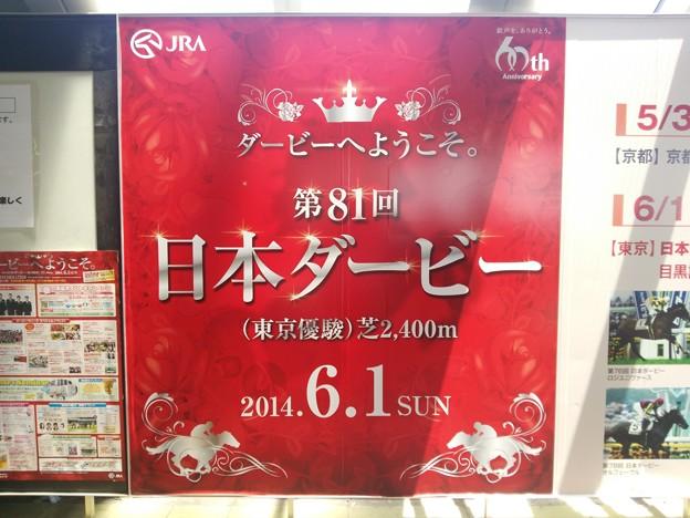 第81回 東京優駿/第128回 目黒記念