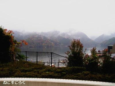 ベーカリーカフェ ル・ポン テラスから見た風景