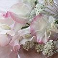 写真: 春色の香りをのせて