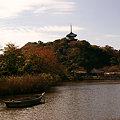 写真: 紅葉の三渓園11123a