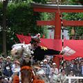 Photos: 流鏑馬鎌倉0420tp