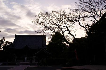 本覚寺夕焼け5ta