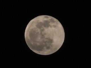 4月15日(火)、今夜は満月でした。