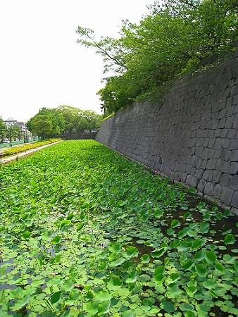 鹿児島方面研修 (15)