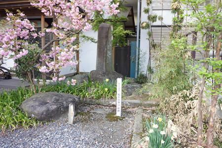 興徳寺 - 05
