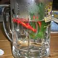 写真: 金魚3