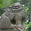 写真: マンガチック狛犬