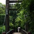Photos: 「根川貝殻板橋」
