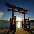 Photos: 鳥居の朝日