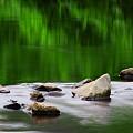 Photos: 枯山水