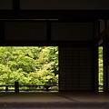写真: 天龍寺庭園