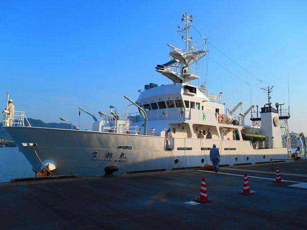 豊潮丸接岸完了~広島大学生物生産学部附属練習船・調査船~