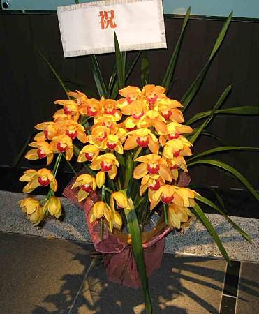flower-200214-1