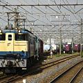 写真: ef65-1119-20081003