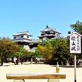 写真: 愛媛 松山城